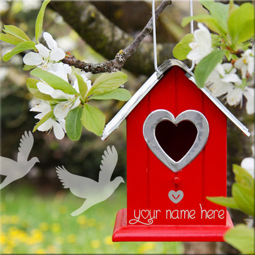 Love Birdhouse In Tree Picture With Custom Name